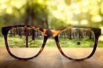 Photo of a pair of glasses with trees in the background